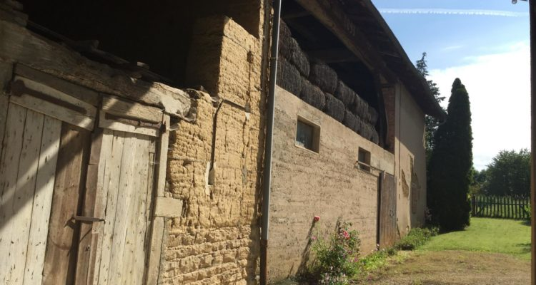 Maison Fareins 100m² - Fareins (01480) - 12