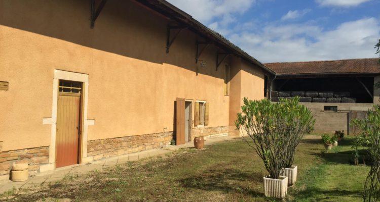 Maison Fareins 100m² - Fareins (01480) - 2