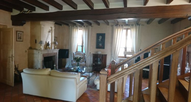 Maison 360m² sur 4600m² de terrain - Belleville (69220) - 6