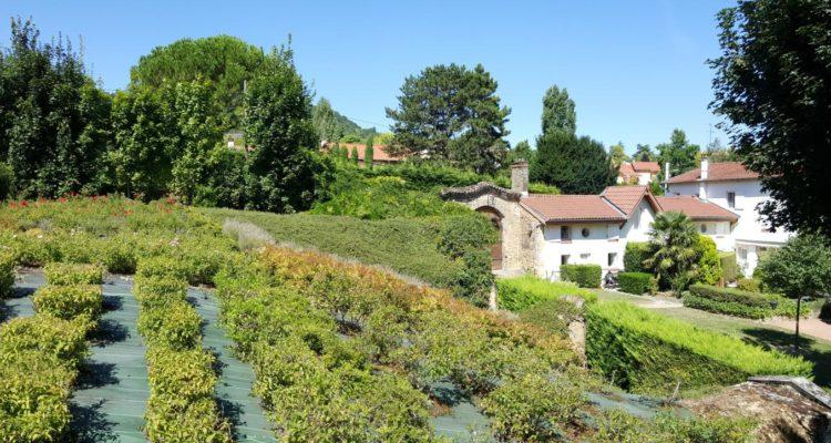 Maison 94m² sur 30m² de terrain - Collonges-Au-Mont-d'Or (69660) - 7