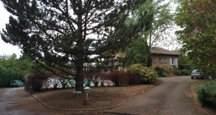 Maison 220m² sur 3500m² de terrain - Saint-Didier-de-Formans (01600) - 1