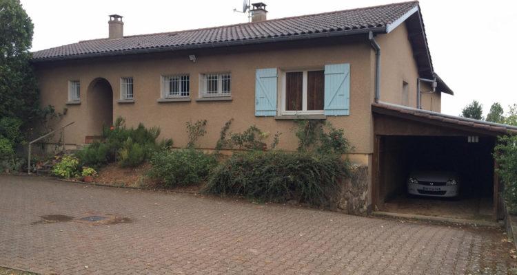 Maison 220m² sur 3500m² de terrain - Saint-Didier-de-Formans (01600) - 2