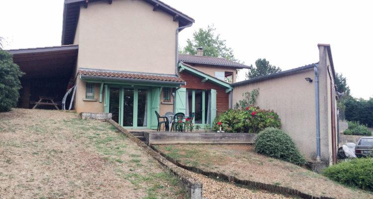 Maison 220m² sur 3500m² de terrain - Saint-Didier-de-Formans (01600) - 7