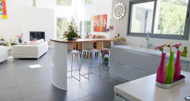 Maison 260m² sur 1404m² de terrain - Rochetaillee-sur-Saone (69270) - 1