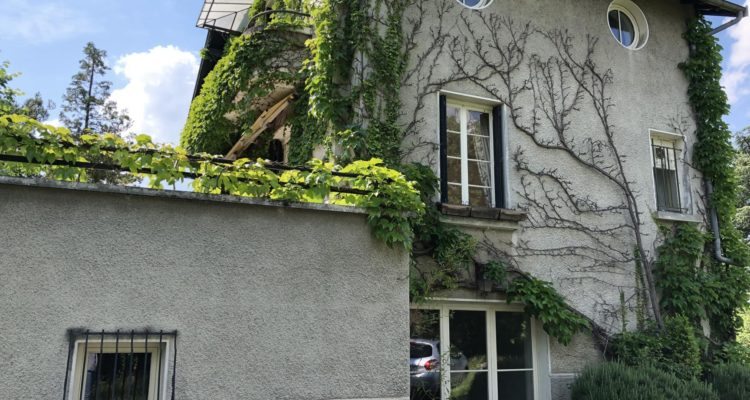 Maison 215m² sur 2000m² de terrain - Saint-Didier-de-Formans (01600)