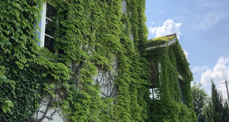 Maison 215m² sur 2000m² de terrain - Saint-Didier-de-Formans (01600) - 12