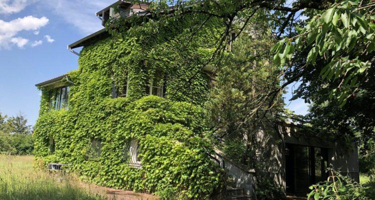 Maison 215m² sur 2000m² de terrain - Saint-Didier-de-Formans (01600) - 14