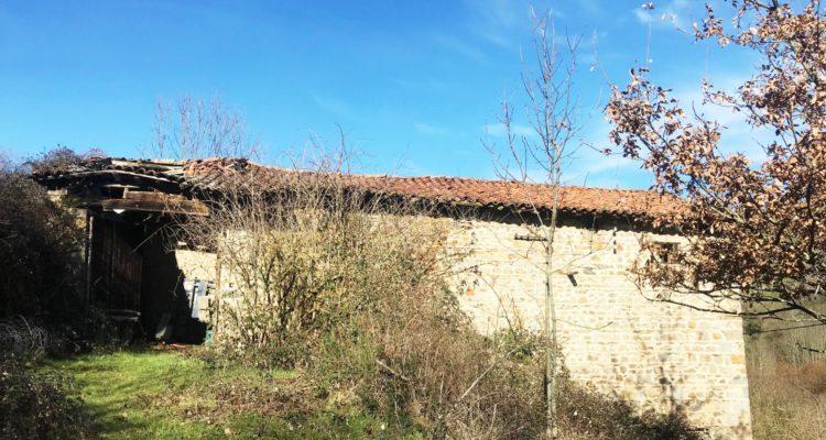 Maison m² sur 70000m² de terrain - Affoux (69170) - 2
