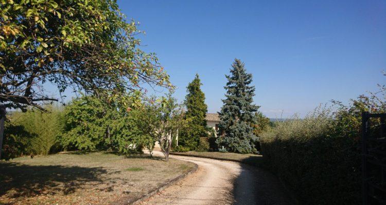 Maison 186m² sur 2343m² de terrain - Charentay (69220) - 11
