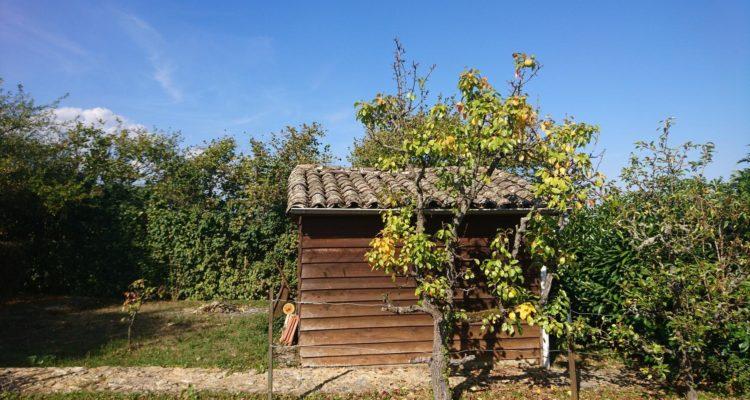 Maison 186m² sur 2343m² de terrain - Charentay (69220) - 16