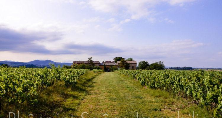 Maison 252m² sur 55000m² de terrain - Pouilly-le-Monial (69400)