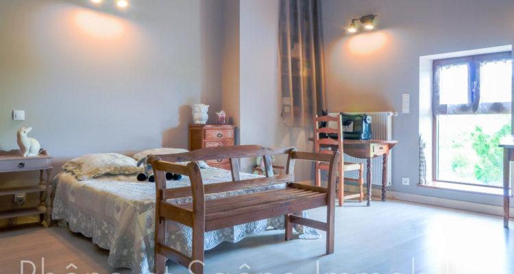 Maison 252m² sur 55000m² de terrain - Pouilly-le-Monial (69400) - 15