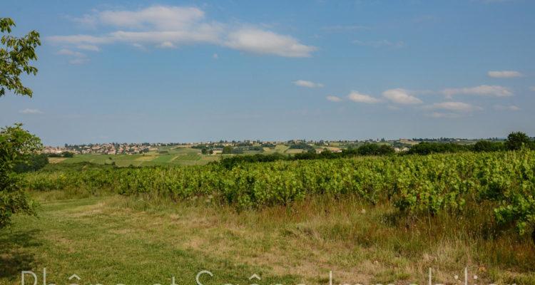 Maison 252m² sur 55000m² de terrain - Pouilly-le-Monial (69400) - 2