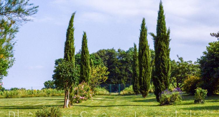 Maison 252m² sur 55000m² de terrain - Pouilly-le-Monial (69400) - 5