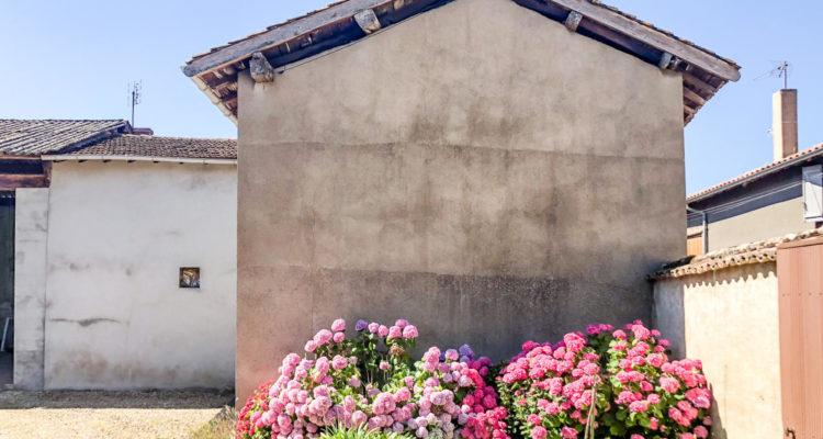 Maison 120m² sur 220m² de terrain - Fareins (01480) - 3