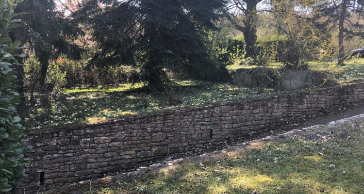 Vente Terrain 697 m² à Albigny-sur-Saône 250 000 € - Albigny-sur-Saône (69250) - 3