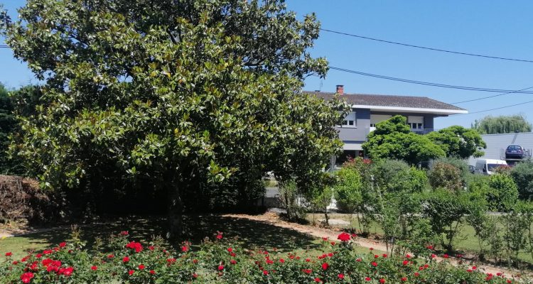 Vente Maison 109 m² à Le Perréon 365 000 € - Le Perréon (69460) - 17